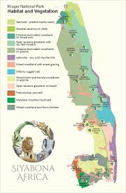 biomes map kruger park birding biome habitat map