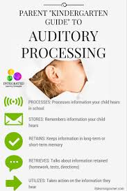 auditory system u201ckindergarten guide u201d to auditory processing and