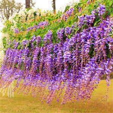 silk home 2017 artificial flowers silk flower wisteria flower rattan for