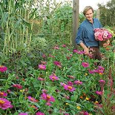 edible garden mixing ornamental and edible plants