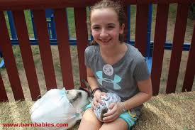 Massachusetts traveling with a baby images Barn babies traveling petting zoo home facebook