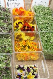 flowers san diego entertaining impress your guests with edible flowers local