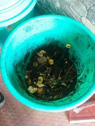 Composting Pictures by Composting In 5 Easy Steps With Stuff You Have At Home