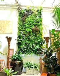 indoor vertical wall garden u2013 guide