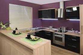 cuisine couleur bois couleur cuisine pourpre armoires noires bois clair jpg 640 427