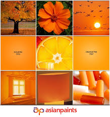 137 best asian paints ideas for house images on pinterest asian