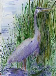 98 best blue heron images on pinterest blue heron herons and