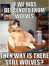 it s actually unconfirmed whether dogs evolved from wolves or if