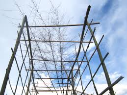bamboo trellis for climbing fun for the plants not the people
