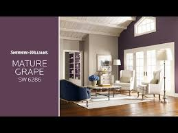 Sherwin Williams 2017 Colors Of The Year A Year In Color Videos