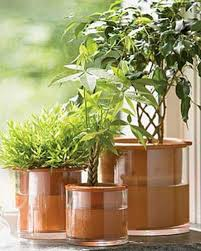 best self watering solutions for container gardens apartment therapy