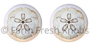 sand dollar cabinet knobs amazon com set of 2 knobs sand dollar design 003 seashells sea