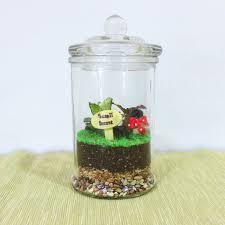 closed terrarium small knob jar design