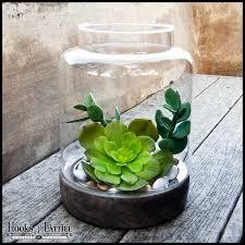 terrarium design amusing glass terrarium globes large globe glass