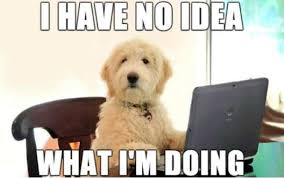 Funny Puppy Memes - 28 hilarious dog memes for 2018 quoteshumor com