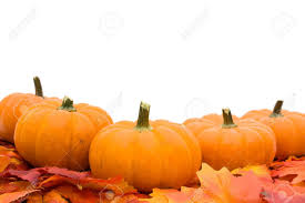 fall pumpkins background pictures fall leaves with a pumpkin isolated on a white background fall