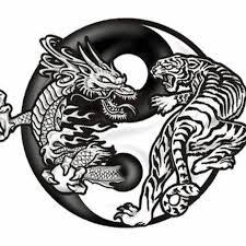 black and tiger in yin yang design