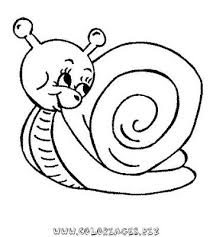 coloriages escargots page 1 animaux