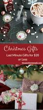 426 best gift giving ideas for the holidays images on pinterest