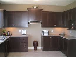 kitchen kitchen paint colors with dark cabinets painting kitchen