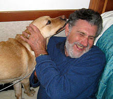 How Do Blind Dogs Know Where To Go Guide Dog Wikipedia