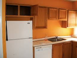 burnt orange kitchen cabinets interior design