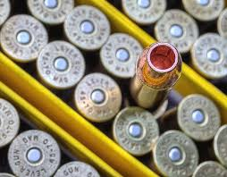 Barnes Buster 45 70 11 Best 45 70 Government Images On Pinterest Firearms Guns And