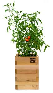 roll out vegetable garden rolling garden planters for patios and balconies minifarmbox