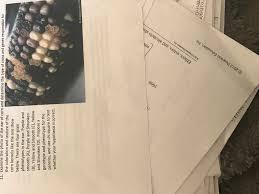 biology archive february 06 2017 chegg com