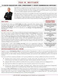 Best Executive Resume Format by Executive Bios The Top 10 Ways To Use One