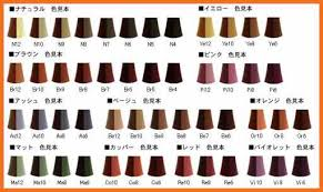 hair color chart loreal hair color chart artresume sle