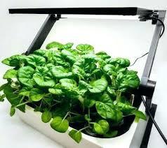 grow light indoor garden indoor herb garden kit with grow light indoor garden kit with light