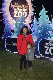 brookfield zoo winter lights floras holiday magic brookfield zoo floradise