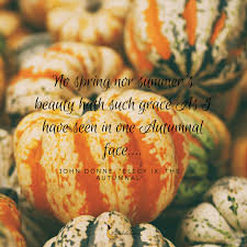 quotes about beauty of fall 20 beautiful autumn quotes that will make you fall in love with