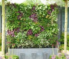 wall flowers green vertical walls at the chelsea flower show treehugger