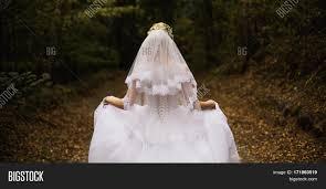 bridal back hairstyle photo bride back wedding dress on image u0026 photo bigstock