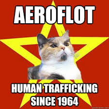 aeroflot human trafficking cat meme cat planet cat planet