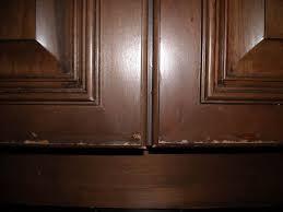 Kitchen Cabinet Repairs Image Photo Album Kitchen Cabinet Repair - Kitchen cabinet repairs