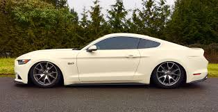 mustang 50th anniversary edition 50th anniversary edition 2015 ford mustang bickford motorsports