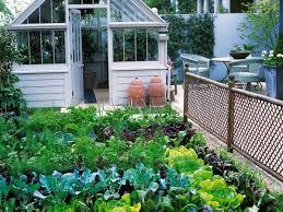 Backyard Plus Outdoor And Patio Beautiful Backyard Vegetable Garden With White