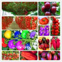 wholesale free vegetable garden seeds buy cheap free vegetable