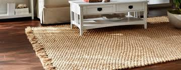 Wayfair Rug Sale Sisal Carpet Home Depot Decorating Captivating 8x10 Area Rugs For