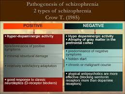 schizophrenia delusional disorder schizotypal disorder