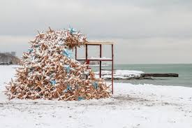toronto s winter stations design competition transforms lifeguard