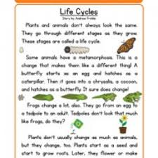 life cycles life science reading comprehension worksheet