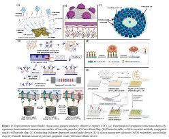 immunoaffinity binding for separation of circulating tumor cells