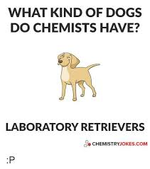 Chemistry Jokes Meme - what kind of dogs do chemists have laboratory retrievers chemistry
