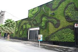 the best of contemporary ideas of wall garden design as the best