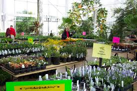 native plant sale plantapalooza spring plant sale at uga set for april 9 uga today