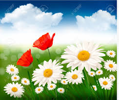 nature background with beautiful flowers and blue sky royalty free